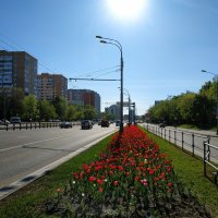 Настоящий май :: Андрей Лукьянов