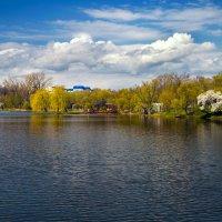 Лошицкий парк – один из самых красивых и мистических парков Минска. :: Дмитрий Сахончик