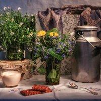 Весна в доме. :: Svetlana Sneg