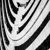 Skeleton :: Мария Буданова