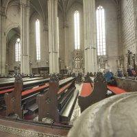 Собор Вознесения Девы Марии и святых Стефана и Владислава — католический собор в Загребе, Хорватия :: leo yagonen