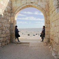 Иудейская пустыня – не только песок… Крепость Авдат – прекрасное место для фотосессии :: сашка ярмарков
