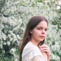 Полина :: Наталья Скипина
