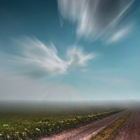 Степная дорога... :: Александр Довгий