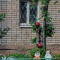 Жили были дед и баба... :: gribushko грибушко Николай