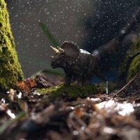 Утро в лесу :: Павел Бирюков