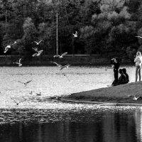 На озере :: Людмила Волдыкова