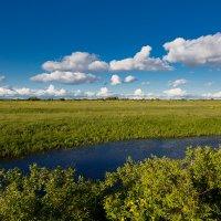 Пейзаж с озером :: Александр Синдерёв