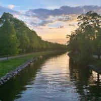 Закат, остров Djurgården Стокгольм Щвеция :: Alm Lana