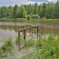 Подтопленные мосточки :: marmorozov Морозова