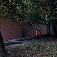 Манит и притягивает свет окна в ночи :: Валентина Харламова