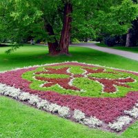 Живописный газон :: Нина Синица