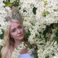 Портрет в цветах :: Ирина Кононова