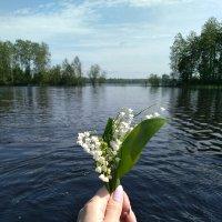 Хорошо в деревне летом) :: Ирина Лесиканич
