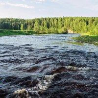 Каменистый перекат на таежной реке Чуть, окрестности Ухты :: Николай Зиновьев