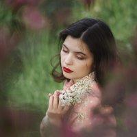 Девушка в вишневом цвету :: Валерий Фролов