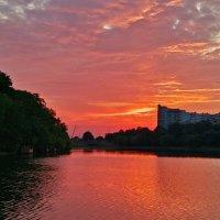 Закат.Москва 18.06.2020г. :: Виталий Виницкий