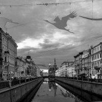Подготовка :: Людмила Волдыкова