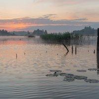 рыболовное утро :: Александр Евдокимчик