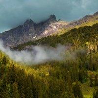 альпийское утро :: Elena Wymann
