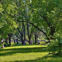Там,где лето живёт... :: Sergey Gordoff