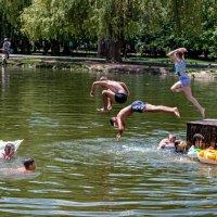 Вот и лето пришло! :: Юрий Яловенко
