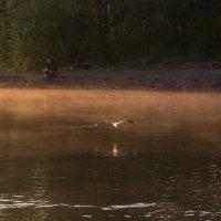 рыбаки и чайки :: Ларико Ильющенко