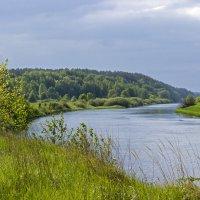 Изгиб реки :: оксана