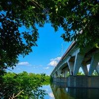 Вид на мост с бока и низа. :: Zefir58 Verx