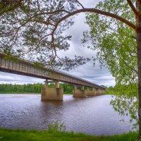 Мост через р.Мезень :: Дмитрий Иванов