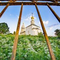 Церковь Рождества Богородицы село Городня :: Вероника Куницына