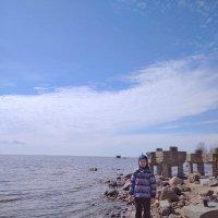 У побережья Финского залива. :: Валентина Жукова
