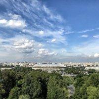 Москва как на ладони ... :: Лариса Корж