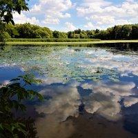 Неба отражение в зеркале озера :: Ольга Русанова (olg-rusanowa2010)