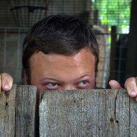 Наблюдательность цыганёнка Вани ! :: Анатолий Святой