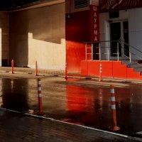 Красное и белое (после дождя) :: Николай Филоненко