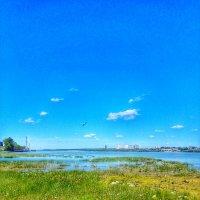 Летний день :: Света Кондрашова
