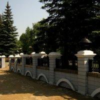 Утро летнего дня!!! :: Радмир Арсеньев