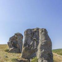 Каменные слоны :: АНДРЕЙ ШЕВЧЕНКО