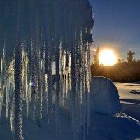 Весна в Арктике. :: игорь кио