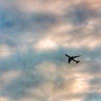 самолёт в небе :: Света Кондрашова