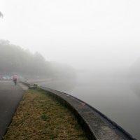 А он едет за туманом... :: igor G.