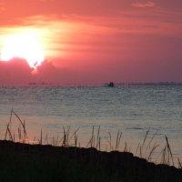 Закат на острове Джарылгач. :: Алла Рыженко