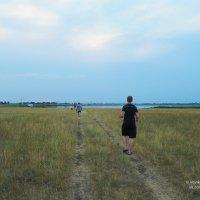 Спасительная прохлада уже близко :: Сергей Воинков