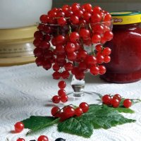 Дела домашние :: Galina Solovova