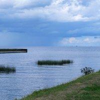 На Финском заливе :: Ольга Васильева