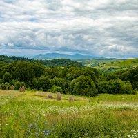 Лето в горах :: Roman Ilnytskyi
