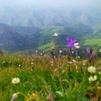 Горный пейзаж.. :: Клара