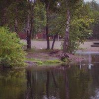 Татышев-парк. :: Вадим Басов