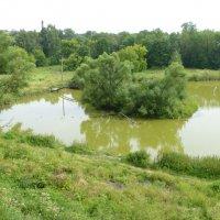 Старый пруд в центре города :: Сергей Колганов